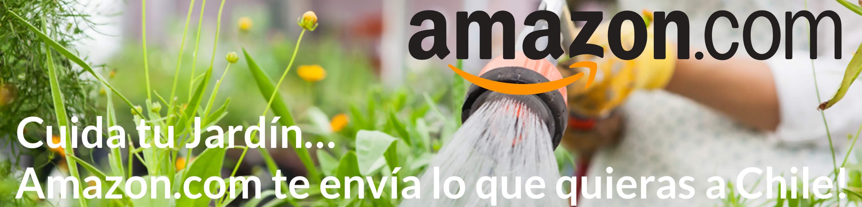 Amazon.com te envía lo que quieras a Chile!